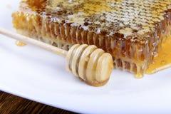 Palillo para la miel cerca del panal Imagen de archivo libre de regalías