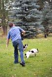 Palillo que lanza del hombre a los perros Imagen de archivo