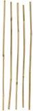 Palillos de bambú Imagen de archivo