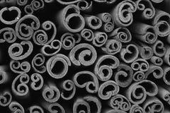 Palillos de canela en fondo blanco y negro Fotografía de archivo