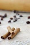 Palillos de cinamomo Imagen de archivo libre de regalías
