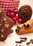 Palillos de cinamomo con la decoración de la Navidad Fotos de archivo