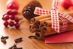 Palillos de cinamomo con las galletas de la Navidad Imagen de archivo libre de regalías