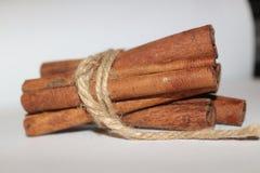Palillos de cinamomo secados Foto de archivo libre de regalías
