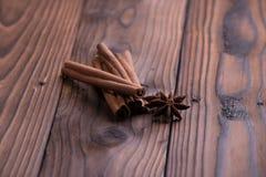 Palillos de cinamomo y anís de estrella Imagen de archivo