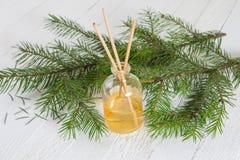 Palillos de la fragancia o difusor coníferos del olor Fotos de archivo
