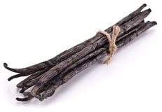 Palillos de la vainilla. Foto de archivo