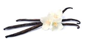 Palillos de la vainilla con las flores Fotos de archivo libres de regalías