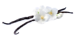 Palillos de la vainilla con las flores Imagenes de archivo