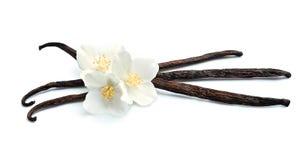 Palillos de la vainilla con las flores Fotos de archivo