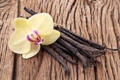Palillos de la vainilla con una flor. Imagenes de archivo