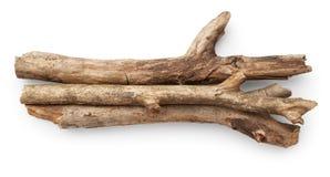 Palillos del árbol Foto de archivo libre de regalías