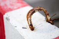 Palillos del aro del hierro del moho en el cemento Foto de archivo