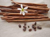 Palillos del canela y de la flor del grano de café y blanca en lona fotos de archivo