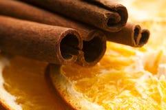 Palillos secados de la naranja y de cinamomo Foto de archivo libre de regalías