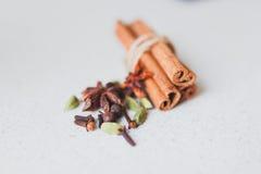 Palillos y especias de canela Imagen de archivo libre de regalías