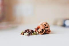 Palillos y especias de canela Foto de archivo libre de regalías