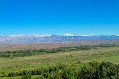 Palin e alte montagne verdi qui sopra Fotografia Stock