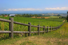 Paling farm. Wooden fence on a farm on the mountain Stock Image