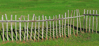 Paling fence made of wooden sticks Royalty Free Stock Images