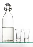 Palinka royalty free stock images