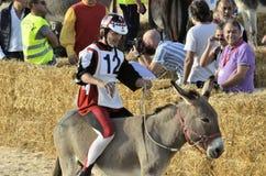Palio de los burros de Alba (Cuneo-Italia) y de la trufa blanca internacional justa fotos de archivo