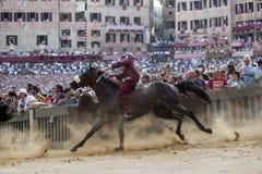 Palio di Siena Royalty Free Stock Image
