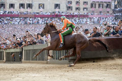 Palio di Siena. SIENA, ITALY - AUGUST 16, 2015 : Rider competes in the horse race Palio di Siena in the medieval square Piazza del Campo in Siena, Italy. In this royalty free stock photo