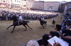 Palio di Siena - july 2003. Before the real Palio, some tests are performed. One of the first is the evidence for the choice of the horses. The jockeys do not stock photo