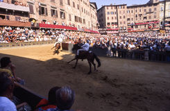 Palio di Siena - july 2003 Royalty Free Stock Photos