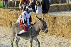Palio of the donkeys of Alba (Cuneo-Italy) and the International White Truffle Fair Stock Image