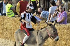 Palio of the donkeys of Alba (Cuneo-Italy) and the International White Truffle Fair Stock Photo