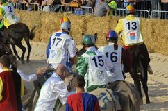 Palio of the donkeys of Alba (Cuneo-Italy) and the International White Truffle Fair Stock Photos