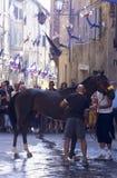 Paliodi Siena - juli 2003 Royalty-vrije Stock Afbeelding
