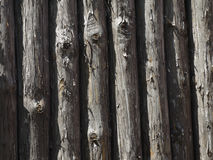 Palisade, fence Royalty Free Stock Photography