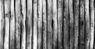 Palisade stockade palings logs. Abstract background, old, ancient. Black and white image Royalty Free Stock Photos