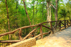 Palisade of waterfall. In thailand Royalty Free Stock Images