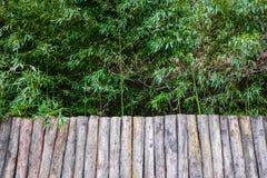 palissade van ruw houten bamboebosje Stock Foto's