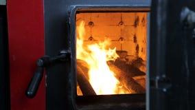 Paliwo pali w przemysłowym bojlerze Widok przez otwarte drzwi zbiory wideo