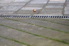 Palla Fotografie Stock Libere da Diritti