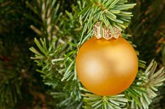 Palla & albero di natale Immagini Stock