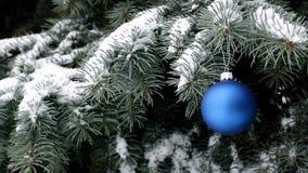 Palla blu di Natale che appende sul ramo dell'abete rosso sotto le precipitazioni nevose archivi video
