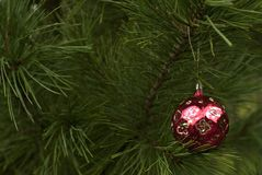 Palla d'annata dell'albero di Natale Fotografia Stock Libera da Diritti
