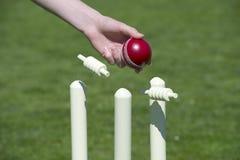 Palla da cricket e wicket Fotografie Stock Libere da Diritti