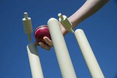 Palla da cricket e wicket Immagini Stock