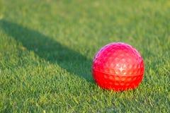 Palla da golf rossa su erba Immagini Stock Libere da Diritti