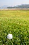 Palla da golf su verde fotografia stock