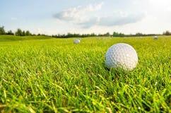 Palla da golf sul campo verde Immagine Stock