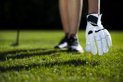 Palla da golf sul prato verde, driver fotografia stock libera da diritti