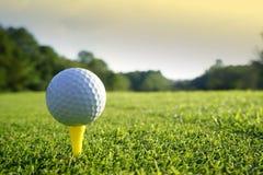 Palla da golf sul T nel bello campo da golf al fondo di tramonto fotografia stock libera da diritti